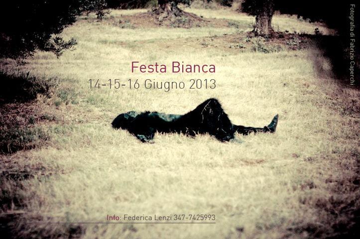Luciano D'Abbruzzo e MIG – Live acustico – Festa Bianca (GR)